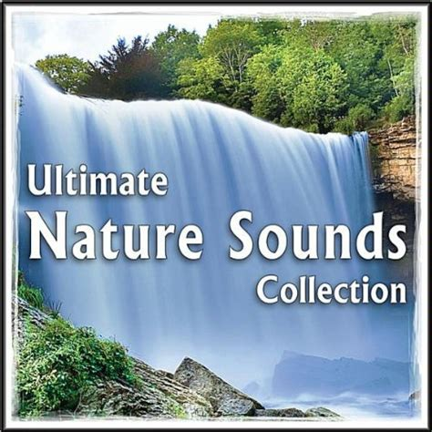 your so beautiful in white mp3 download amazon com beautiful native american flute song forest