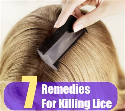 7 home remedies for killing lice treatments