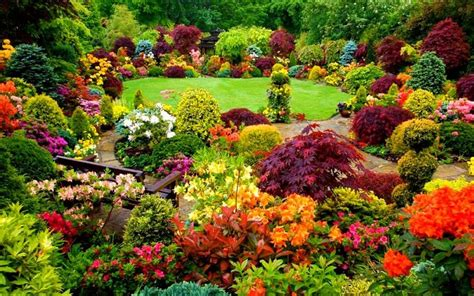 fall flower gardens flower garden in stunning fall colors flowers yard