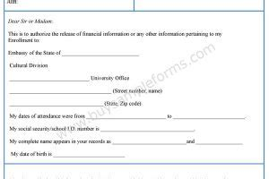 financial release form template release form