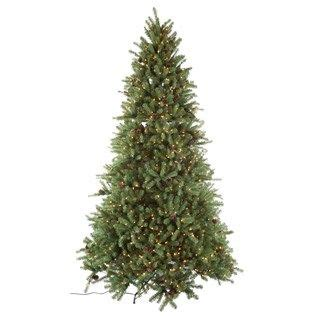 montana fir christmas tree a jolly this gorgeous 9 fast shape montana fir tree with lights is the
