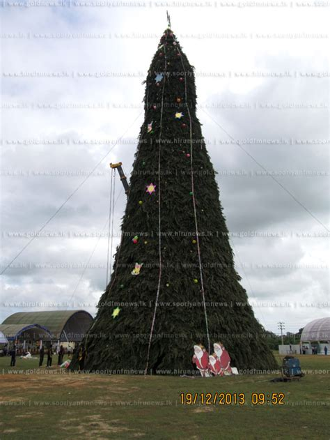 tallest christmas tree at kilinochchi security forces