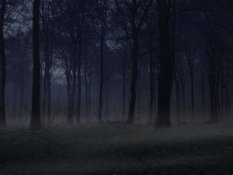 dark view wallpaper dark forest by matt eade photoshop creative