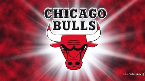 cikaso bulls chicago bulls wallpapers hd wallpaper cave