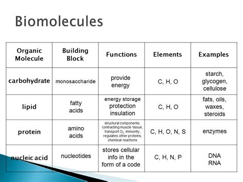 carbohydrates 4 functions biomolecules unit ppt