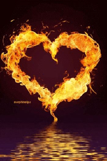 imagenes animadas de amor gif imagenes animadas de corazones de fuego
