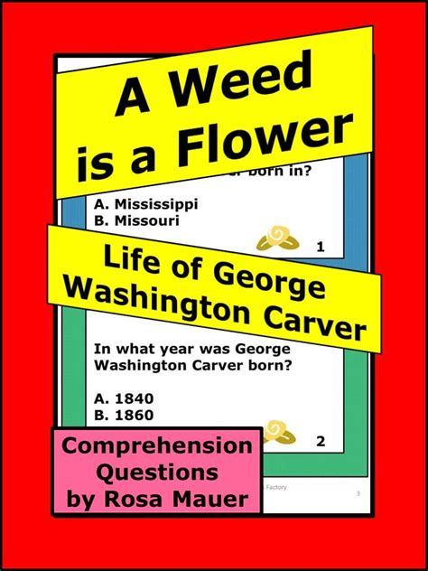 George Washington Mba Questions by 122 Best Rosa S State Facts And Social Studies Task Cards
