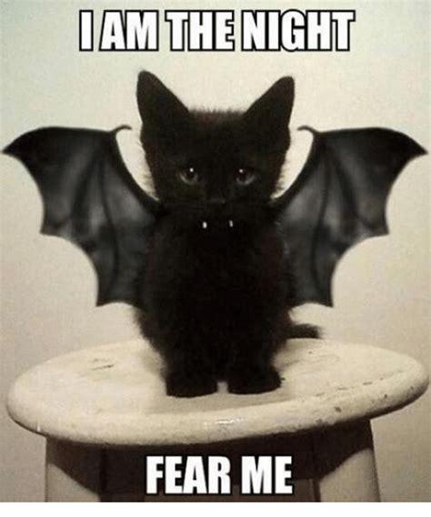 Meme Me - dan the night fear me grumpy cat meme on me me