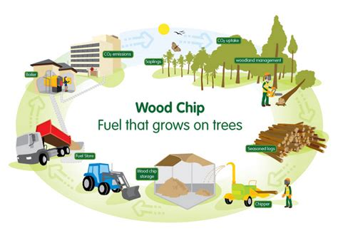 Economical Homes Biomass Energy Reviving The Traditional Sources Through