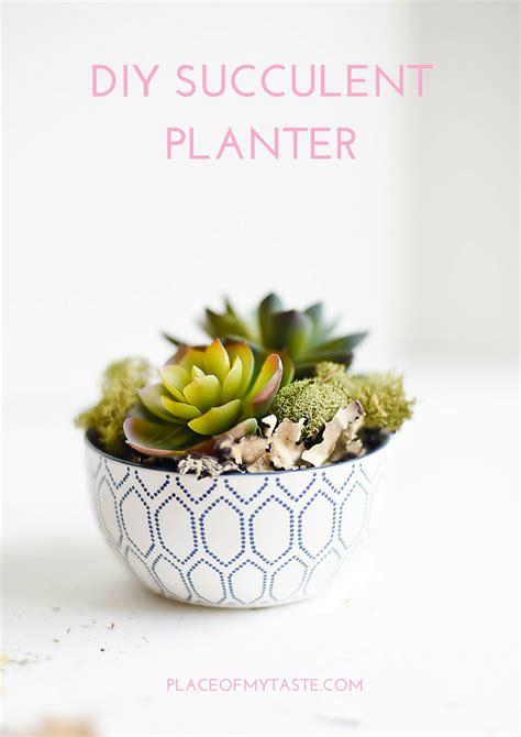 succulent planter diy diy succulent planters