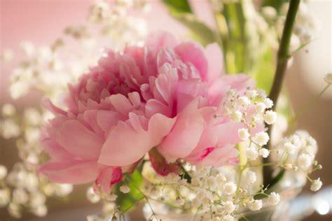 fiori di maggio accordi composizioni floreali matrimonio come sceglierli e