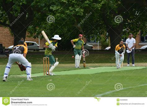 play cricket play cricket in park auckland new zealand