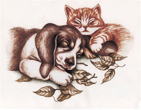 imagenes animales abrazados daltharem noviembre 2007