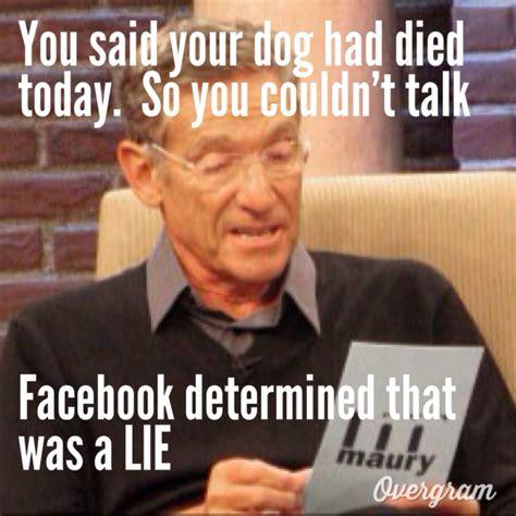 Funny Maury Memes - maury meme maury memes pinterest meme and memes