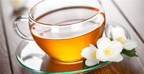 the cultivation and manufacture of tea classic reprint books home choice organic teas choice organic teas