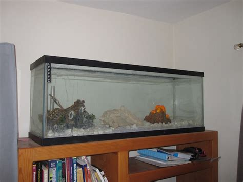 20 gallon fish tank on dresser 90 gallon fish tank 500