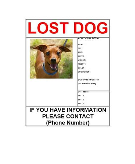 40 lost pet flyers missing cat dog poster template