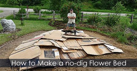 How To Build A Flower Garden Wood Mulch Using Usa Wood Chips To Make Cardboard Flower Bed