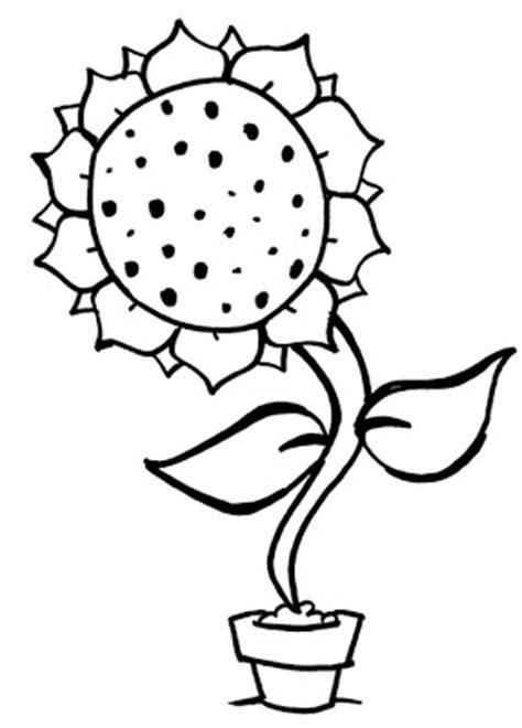 flor colorir e imprimir, risco vaso de flor - Desenhos