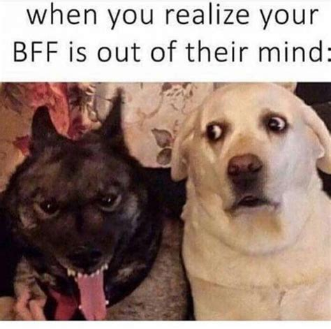 Crazy Friends Meme - when you realize your best friend is insane