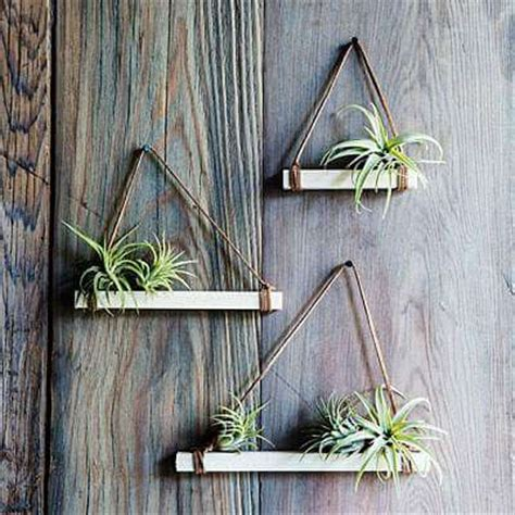 Driftwood Vase 9 Leuke Diy Idee 235 N Voor Luchtplantjes In Huis Homeseeds Nl