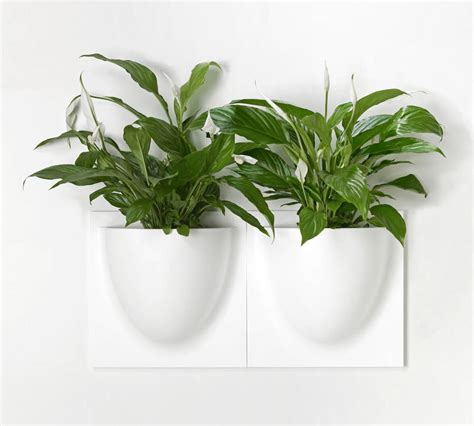 Wall Flower Planters by Wall Flower Pots White Four Pack By Grattify