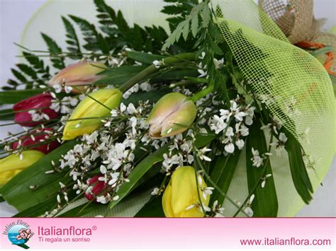 su fiori foto e immagini di fiori su italian flora foto di e