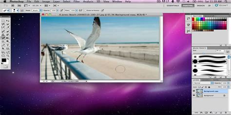 tutorial smudge photoshop cs5 adobe photoshop cs5 blur out a background tutorial youtube