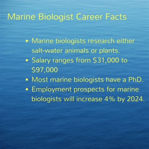 marine biologist salary everything you need to know