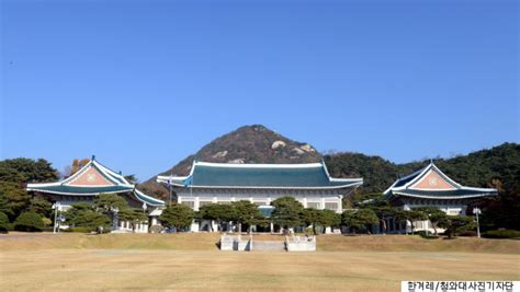 blue house korea 네이버 183 다음 뉴스 개편 청와대 개입 논란