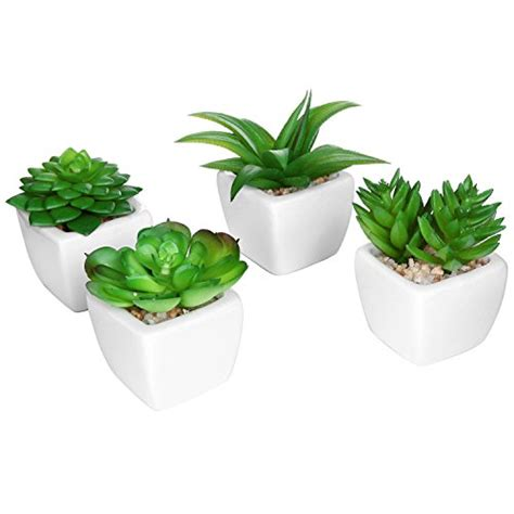 Modern Houseplants by Set Of 4 Modern White Ceramic Mini Potted Artificial