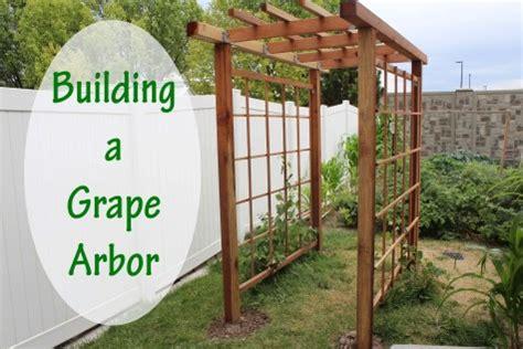 build an arbor trellis building a grape arbor stoney acres