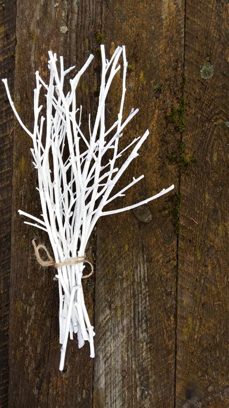 white twigs birch branches hand painted natural twigs vase