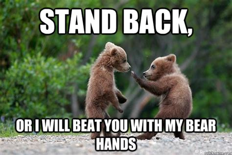 Funny Bear Meme - 22 very funny karate meme pictures