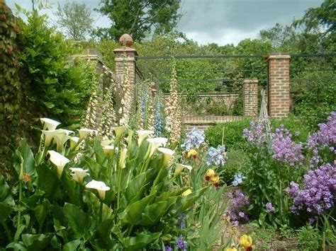 garden divider ideas 1000 images about garden divider ideas on