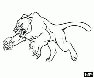 imagenes de jaguares para dibujar ausmalbilder katzen malvorlagen
