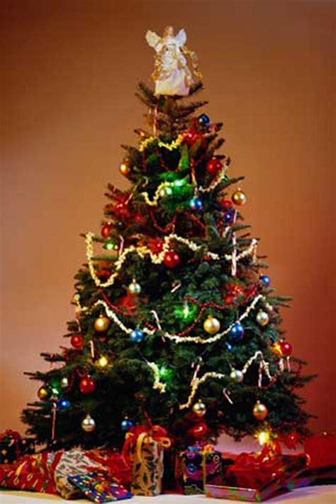 weihnachten weihnachtsbaum poster 61x91 5