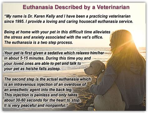 euthanasia for dogs quotes about animal euthanasia quotesgram