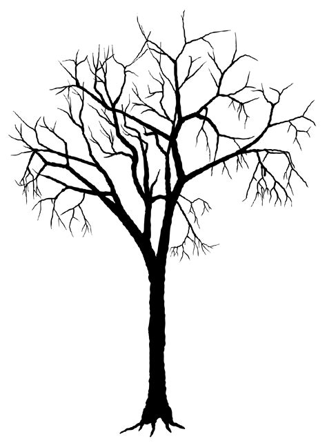 silhouette of trees clipart best