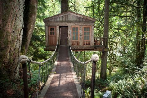 tree homes treehouse point tiny house swoon