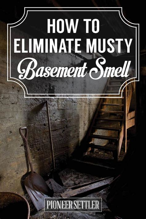 eliminate musty smell in basement pioneer settler