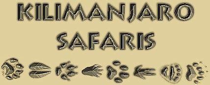 kilimanjaro safaris animal kingdom walt disney world