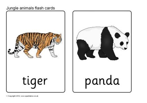printable animal cards free jungle animal flash cards sb7722 sparklebox