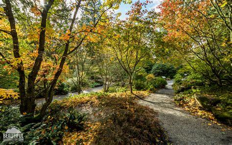 botanical gardens bellevue bellevue botanical garden