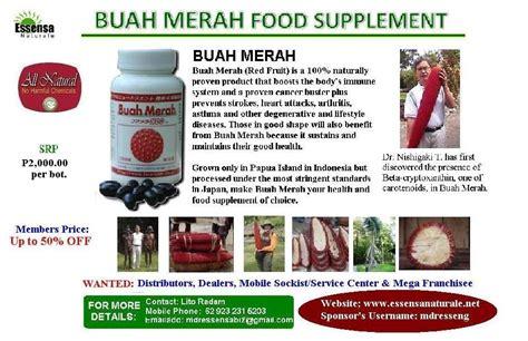 Buah Pepaya Merah essensa naturale cebu buah merah modern medicine