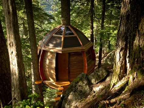 tree homes the world s best tree houses