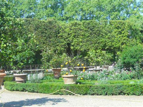 corsi progettazione giardini la finestra di stefania corso di progettazione verde e