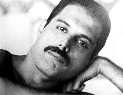 biography freddie mercury queen 1391 best images about freddie love of my life on