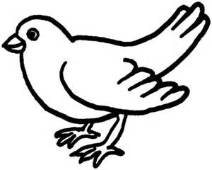 Backyard Dove Coloring Page  SuperColoringcom sketch template