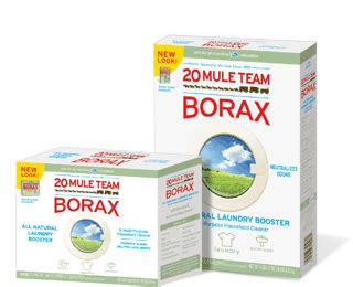 Clean Paint Off Carpet by Top 10 Most Creative Household Uses For Borax Diy Amp Crafts